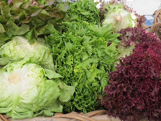 All About Lettuce by Liz Diamond at Healthyveggie.co