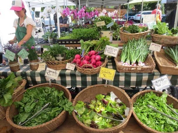 Salad Dressing by Liz Diamond at Healthyveggie.co